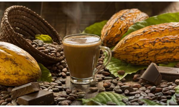 Cacao 'Hot Chocolate'