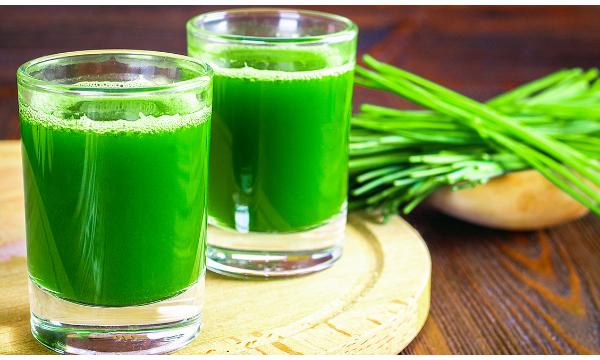 Wheatgrass Alkaline Shot