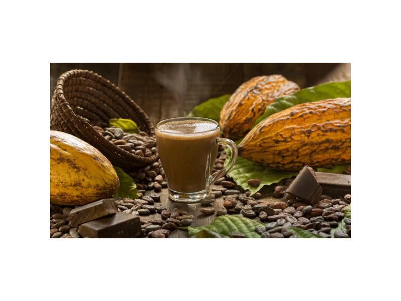 cacao-hot-chocolate